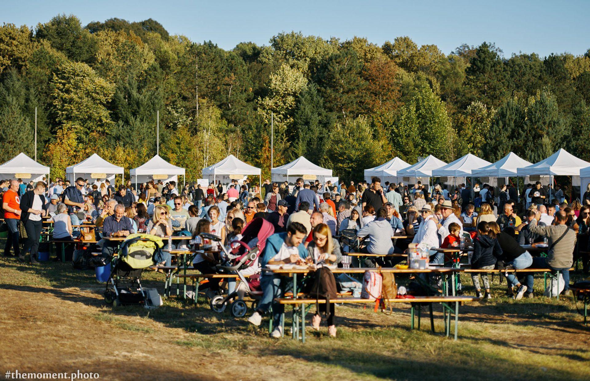Festivalul Vinului Moldovenesc